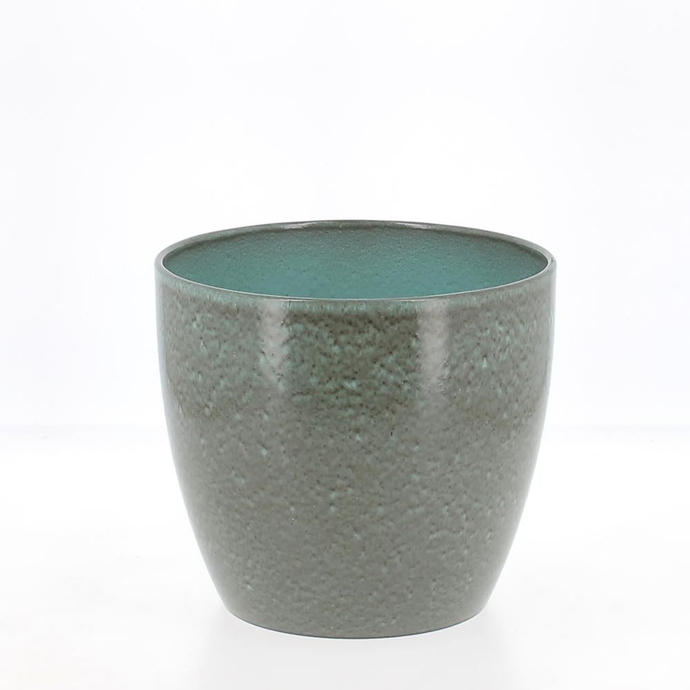 vaso scottish moss